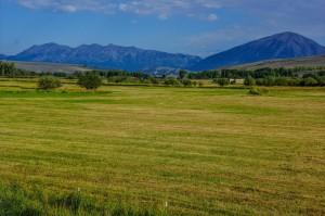 Hay valley